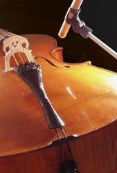 Cello & ABG Mount: cellos and acoustic bass guitars