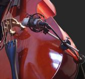 Bass Mount: standard double (upright) bass